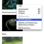 Wie kann man alle platzierten Bilder aus einer Word-Datei in voller Auflösung extrahieren ?