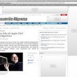 Flash-Animationen in Safari und Firefox blockieren